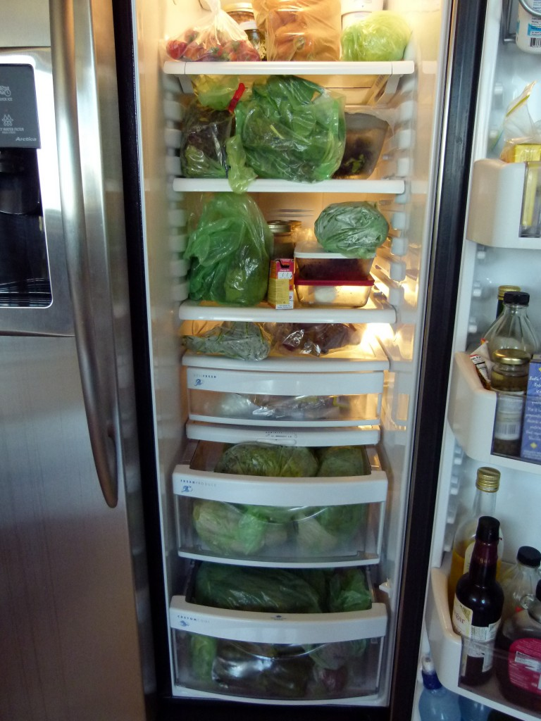 The content of my refrigerator (Photo: Margarita Persico)