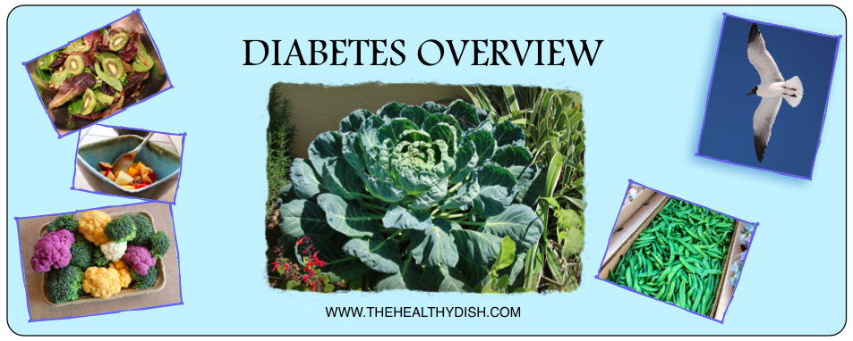 a summary of diabetes Short summary of diabetes • description of the disease • risk factors for the disease • lifestyle choices you can make in your life to decrease your modifiable.