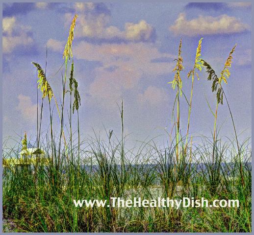 Wheatgrass Blades
